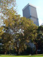 immeuble parc construction durable